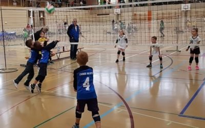 Volleyball U11(U8) Championnat mixte 2019-20